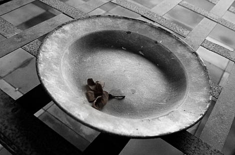 An abandoned dish and flower lie on a bed frame in a cell at the Tuol Sleng Genocide Museum in Phnom Penh, Cambodia where as many as 20,000 executions took place.